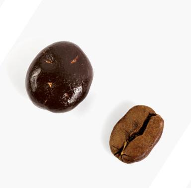 Spécialités chocolat fruits - Grain de café chocolat noir